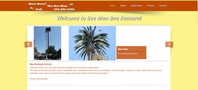 Bee Man Bee Removal